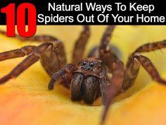 natural-ways-keep-sp