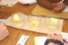 This is a great experiment for children young and old. We used Easter's favorite candy, Peeps, for this classroom or household experiment.