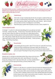 Growing Plants, Indoor Plants, Flora, Herbs, Gardens, Fruit, Lifehacks, Jar, School