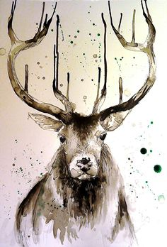 Indian ink stag