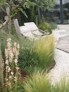 Modern Garden Design, Landscape Design, Beach Gardens, Outdoor Gardens, Outside Living, Outdoor Living, Garden Cottage, Home And Garden, Pebble Garden