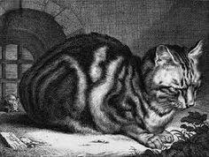 Resultado de imagen para cat and mouse carving