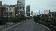 Las Vegas hotels, casinos reopening: Caesars, MGM, Bellagio dates Las Vegas Strip Casinos, Vegas Casino, Las Vegas Hotels, Wake Forest University, York Hotels, Caesars Palace, Planet Hollywood, Venice Travel, Places To Travel
