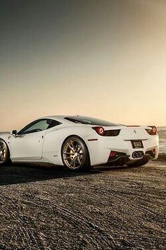 Beautiful White 458~