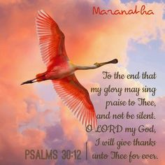 #Psalms 30:1-12 (KJV)  I will extol thee, O LORD; for thou hast lifted me up…