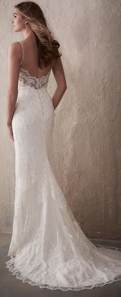 Lace low back fitted Wedding Dress by Adrianna Papell Platinum | @HouseofWuBrands #AdriannaPapellPlatinum #AdriannaPapell #HouseofWu