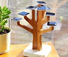 The Solar Suntree Charger is a solar powered charger for your mobile phone. It is powered by 9 solar panel leaves and has a trunk made from bamboo. Solar Power Energy, Solar Energy Panels, Best Solar Panels, Solar Energy System, Diy Solar, Drones, Bonsai, Solaire Diy, Solar Roof Tiles