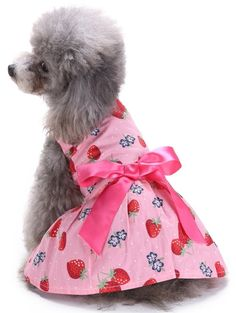 MaruPet Puppy Vintage Polka Dot Ribbon Dog Dress Dog Clothes Cozy Dog Shirt Pet Dress for Small, Extra Small Teddy, Pug, Chihuahua, Shih Tzu, Yorkshire Terriers, Papillon *** Visit the image link more details. (This is an affiliate link and I receive a commission for the sales)