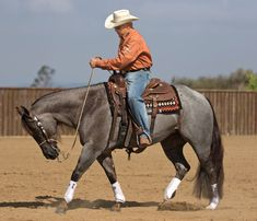Train for Power Steering. A solid start with a snaffle and mindful progression to a bridle will give your horse power steering for his entire performance career. Horse Riding Tips, Horse Tips, Ranch Riding, Reining Horses, Dressage, Horse Training, Training Tips, Training Exercises, Horse Exercises