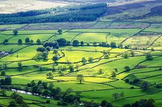 Barden Fell, Yorkshire Dales, England