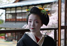 Geiko Ayano - April 2013