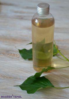 Shampoing aux feuilles de lierre