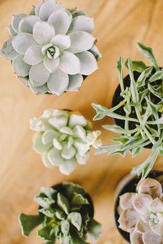 Terrarium Tutorial by Tinge Floral. » Ciara Richardson Photography