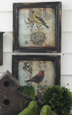 """Two beautiful 10"""" prints - a yellow finch and a red robin in distressed black frames."""