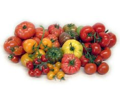 Eat Live Grow Paleo: Tomatoes (growing and preserving)