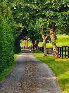 Super ireland landscape black and white irish ideas Beautiful Roads, Beautiful Landscapes, Beautiful Places, Country Life, Country Roads, Country Living, Ireland Landscape, Country Scenes, Take Me Home