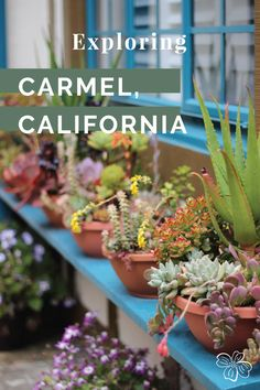 Exploring the town of Carmel-by-the-Sea, California. #carmel #carmelbythesea #californiatravel #normandyinn