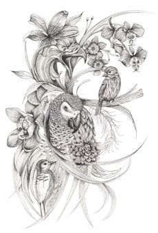 Louise Tiler - Original Drawing  - These illustrations are breathtaking, the accuracy of the lines and scale make it almost picture perfect. The angle at which the leaves and flowers bend emphasises the main focal point adding a real sense of drama. The harsh pencil adds tone and the lighter lines add a sense of movement and delicacy.