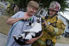 Scary picture of this cat! Apparently she doesn't need the oxygen mask!