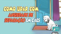 Como Lidar com Ansiedade de Separação em Cães - http://www.caesmania.com.br/ansiedade-de-separacao-em-caes