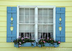 tulip shutters in blue