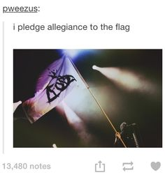i plege allegince to the flag of Fall Out Boy nation, and to the punkers in witch it stands. one fandom, under pete, and the united love for patrick. and thats all i got