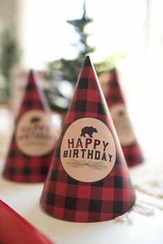 Plaid party hat from a Lumberjack Birthday Party on Kara's Party Ideas | KarasPartyIdeas.com (8)