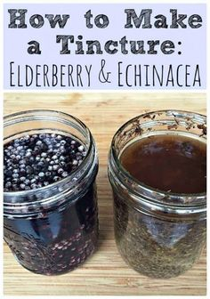 how-to-make-a-tincture-elderberry-and-echinacea