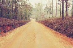 South Georgia country dirt road