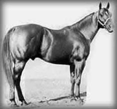 Buster Welch, long tied to the Peppy strain of horses, once said that Mr San Peppy out-sired himself with Peppy San Badger. Description from pinterest.com. I searched for this on bing.com/images