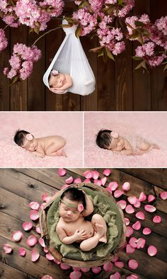 Burnaby Vancouver BC Newborn Photographer Eden Bao Euneek hanging from pink cherry blossom flower tree branch