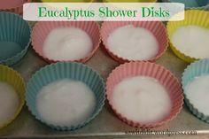 Eucalyptus Shower Disks . sawitdidit.wordpress.com