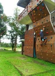 Image result for outdoor home rock climbing wall