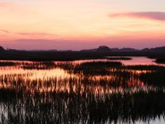 20 things to do in Charleston