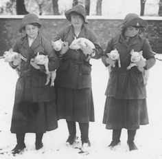 Members of the Women's Land Army with piglets, undated. Catalogue reference: MAF 59/3