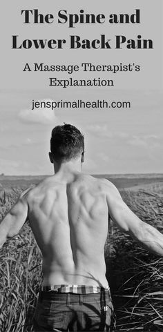 #spine #lower #back #pain #vertebrae #bulgingdisk #herniateddisk #lordosis #lowercrossedsyndrome #backpain #jensprimalhealth (scheduled via http://www.tailwindapp.com?utm_source=pinterest&utm_medium=twpin)