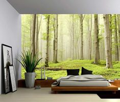 Misty Spring Forest - Large Wall Mural, Self-adhesive Vinyl Wallpaper, Peel & Stick fabric wall decal We use PhotoTex for our wall murals Selling removable self-adhesive wallpaper fabric. Foto-Tex i Large Wall Murals, Removable Wall Murals, Wall Stickers Murals, Wall Decals, Mural Wall, Wall Art, Nursery Stickers, Diy Wall, Vinyl Wallpaper