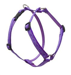 LupinePet Originals 34 Jelly Roll 1220 Roman Harness for Small Dogs *** Click image for more details.(This is an Amazon affiliate link and I receive a commission for the sales)