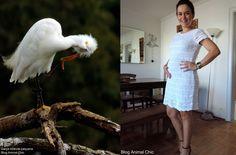 Look inspirado na Garça-branca-pequena. Veja mais fotos acessando http://bloganimalchic.com/2015/01/16/um-look-branco-e-uma-surpresa/ #GarcaBrancaPequena