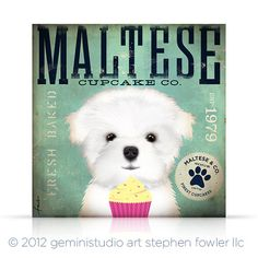 Maltese Cupcake Company original graphic by geministudio on Etsy, $69.00