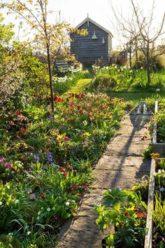This Cotswold cottage is home to the spring garden of our dreams – and here's how to replicate it #cottagegardens