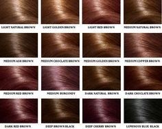 TIPS TO FOLLOW FOR SMART LOOKING HAIR COLOUR   FemaleAdda.com