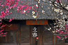 "1st solar term ""Spring Begins"" 立春.   Beautiful views of the 24 solar terms - People's Daily Online"