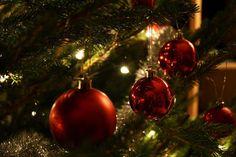 Eine tolle Vorweihnachtszeit!