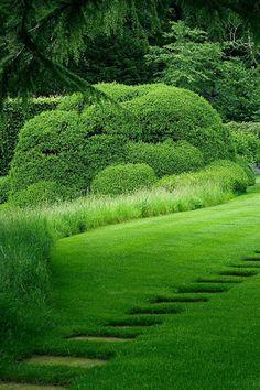 Garden terrace on pinterest hedges landscape architects for Wild grass landscaping