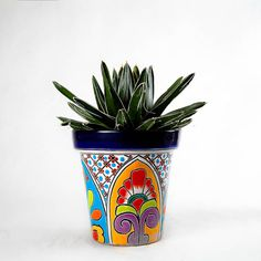 Have The Boys Paint Small Terra Cotta Flower Pots And Plant A Cactus In Each
