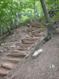 Thousand Steps, Mt Union, PA. Loved the hike and the view was much, much better.