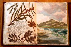 """Jonathan Harris """"Tasmania, Australia"""" sketchbooks"""