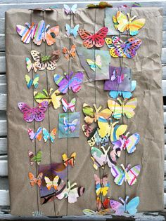 Butterfly Package