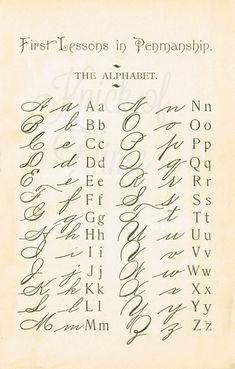 1895 School Primer Penmanship Page with cursive alphabet Alphabet A, Cursive Fonts Alphabet, Letters In Cursive, Old Letters, Tattoo Alphabet, Fancy Letters, Handwriting Worksheets, Beautiful Handwriting Alphabet, Alphabet School